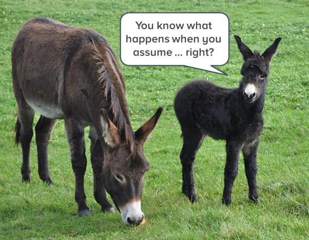 donkeys-who-assume